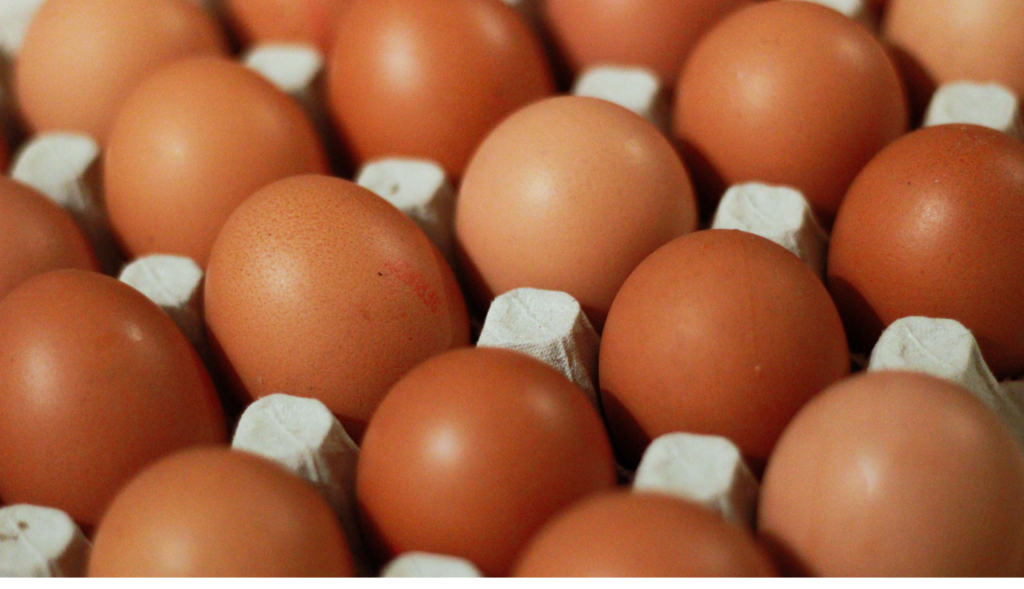 close up of eggs in crate
